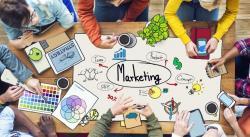 Học và làm marketing có khó không?