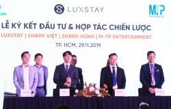 Sơn Tùng cùng thương vụ hợp tác với Startup đình đám Luxstay