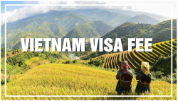 Quy định về phí gia hạn visa Việt Nam cho người nước ngoài 2020